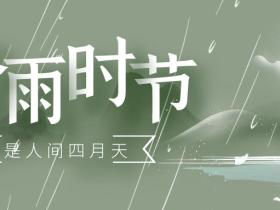 谷雨丨中国传统二十四节气