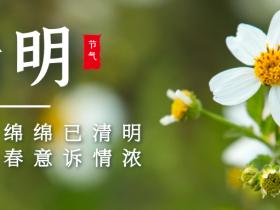 清明丨二十四节气传统文化